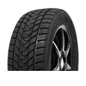 Delinte Winter WD1 215/55 R16 97H