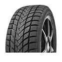 Delinte Winter WD6 225/50 R17 98H